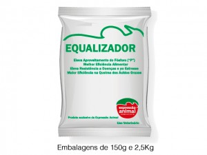 EQUALIZADOR_OK
