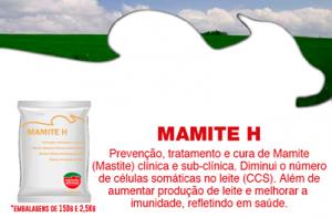 MAMITE-h-1-300x290