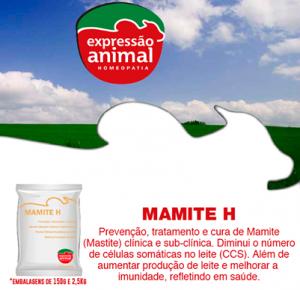 MAMITE h