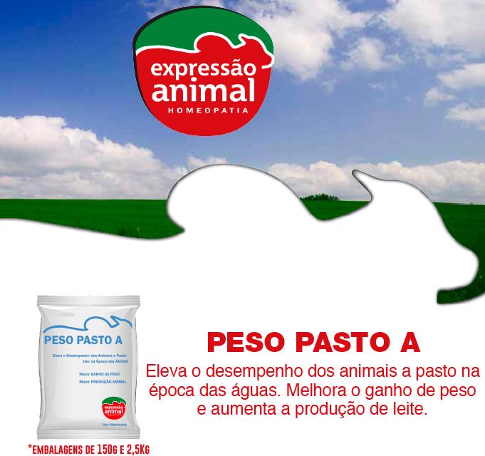 PESO PASTO A