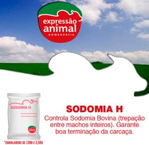 SODOMIA BOI site